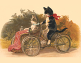 273. Cats on Trike